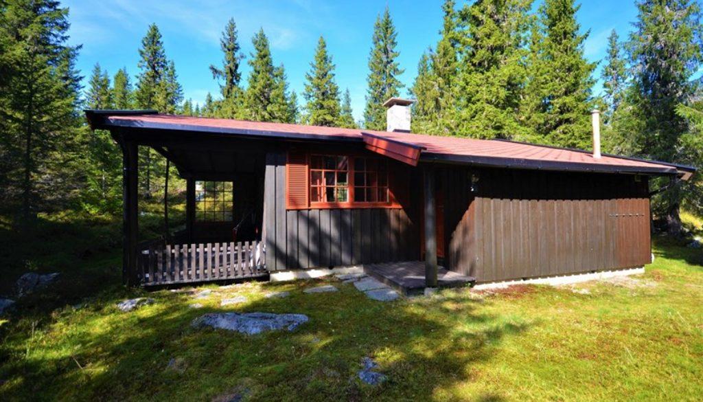 God plass rundt hytten. Overbygd inngangsparti med romslig terrasse.