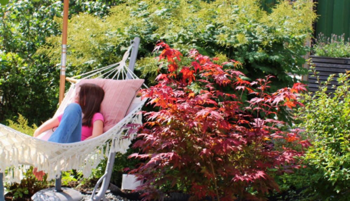 Nydelig hage med plass til hengekøye.